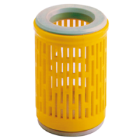 Foot strainer for pump B2