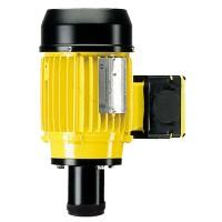 Einphasenmotor für vertikale IBC Containerpumpe B50